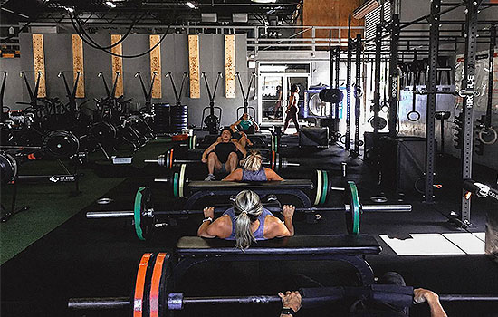 Fit Crew strength, conditioning, youth classes, fitness, group classes, personal training, athletic performance, summer camp, nutrition, genetic testing Bradenton